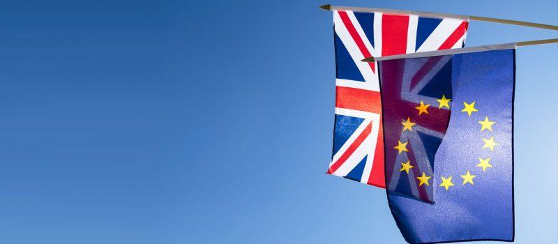 Wat doet Brexit straks met TravelBird?